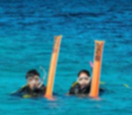Scuba Diving Norfolk Christal Seas Scuba Specialty Diver SMB