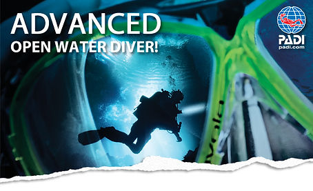 Scuba Diving Norfolk Christal Seas Scuba Advanced Open Water