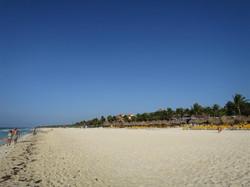 1 beach1