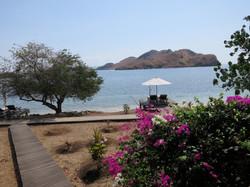 kmodo resort 2