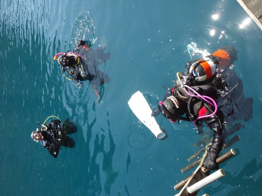 divers (Medium)