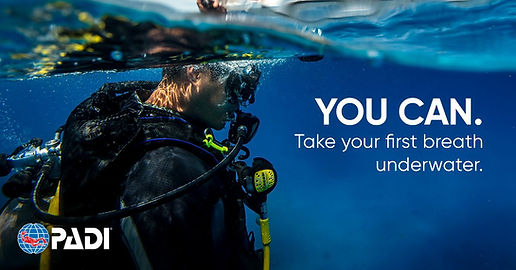 Discover Scuba Diving.jpeg