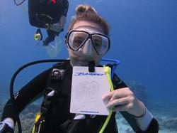 jasmin 50 dives2