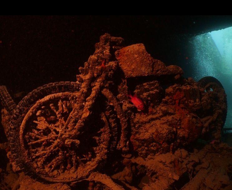Dive site Thistlegorm Darren Bryant