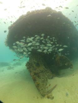 Dive site Bajan Queen, Carlisle Bay, Bar
