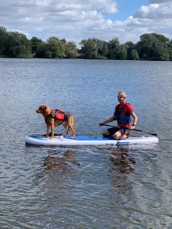 paddleboard and dog (Medium)