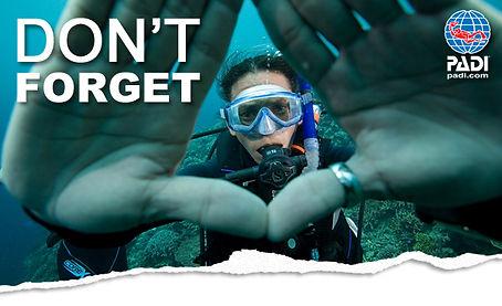 Scuba Diving Norfolk Christal Seas Scuba Reactivate