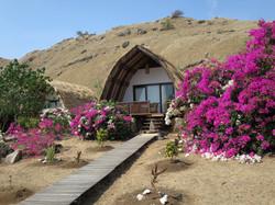 kmodo resort