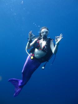 uw mermaid 1