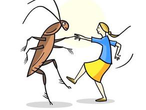 Spain - Bailando Con Las Cucarachas