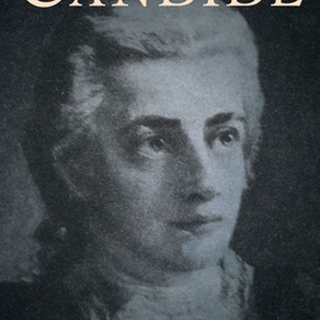 Candide and Positive Vibes