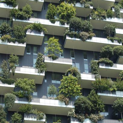 Grün am Bau – fände ich sehr interessant!