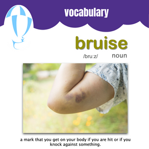 Bruise Vocabulary Bristol Lane