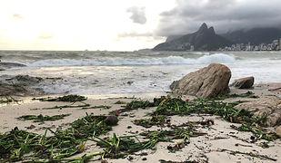 Clean Up Rio 2020