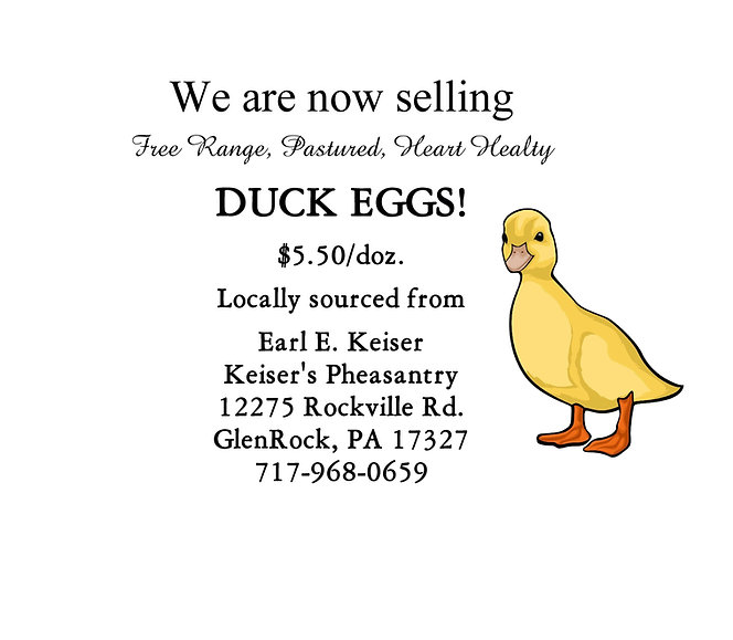 duck  eggs.jpeg