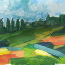 Summer Fields in Bloom
