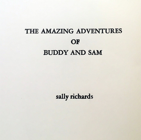 The Amazing Adventures of Buddy and Sam