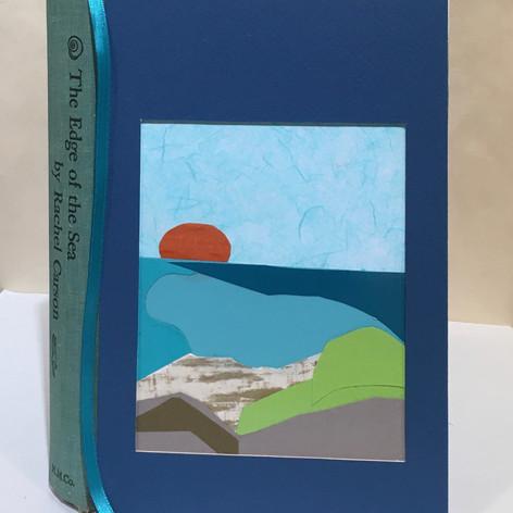 The Edge of the Sea (Rachel Carson)