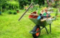 jardin.jpeg