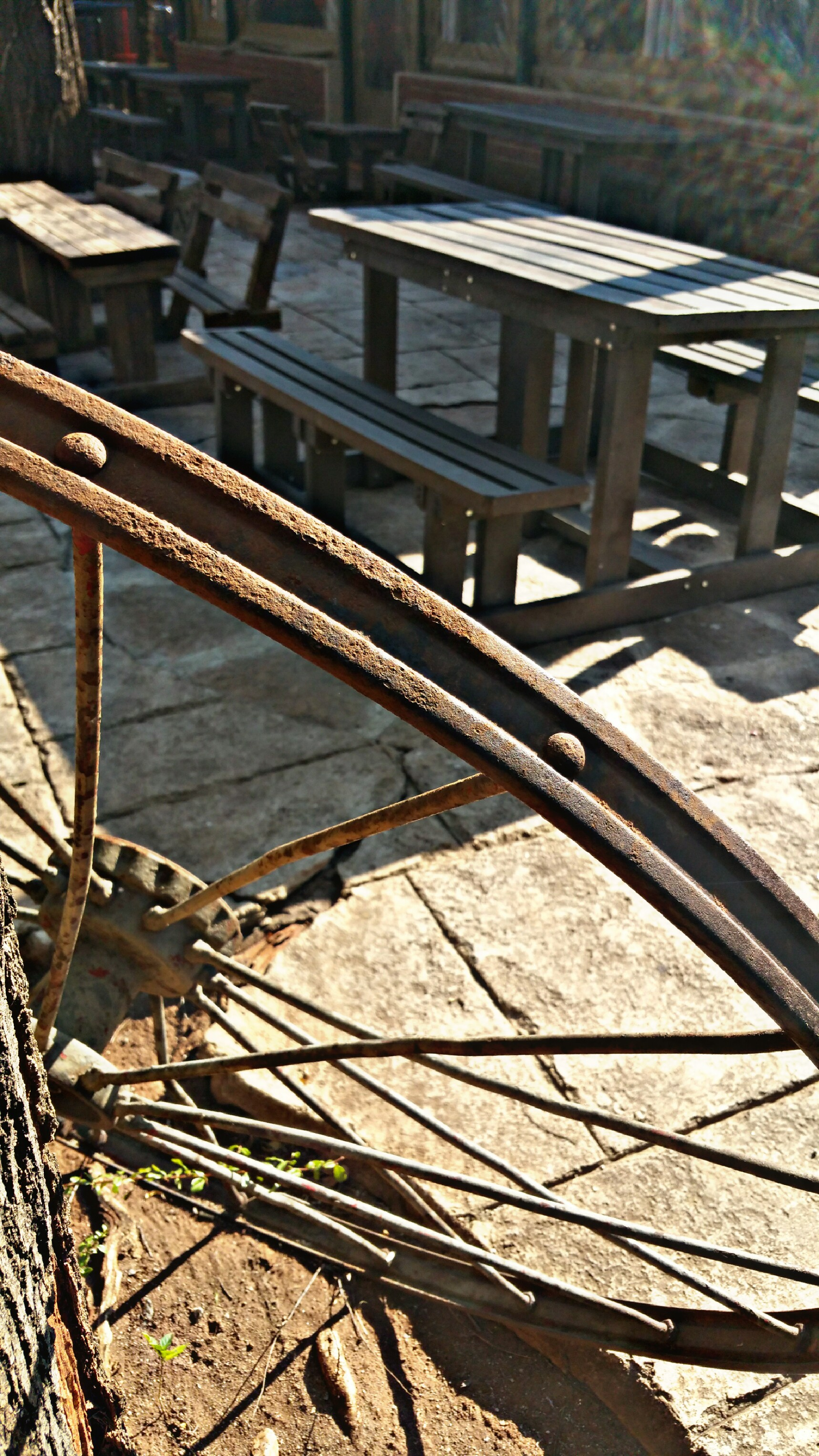 PicsArt_07-26-09.40.10
