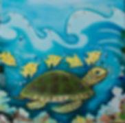 turtle cropped.jpg