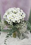 ramo de margaritas blancas para regalar con el envio en la ciudad de valencia floristeria la alqueria valencia