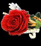 Seleccione la cantidad de rosas rojas de alta calidad que quiere en su ramo, tiene desde una rosa a dieciocho rosas rojas preciosas para enviarlas a Valencia desde floristeria la alqueria