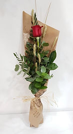 1 rosa A.jpg