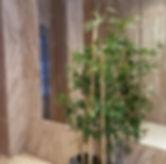 realizamos decoraciones para patios de vecinos, comunidades de vecinos, con plantas artificiales y decoraciones