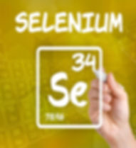 Home page selenium.jpg