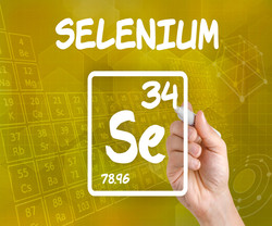 Home page selenium