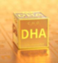 dha home page.jpg
