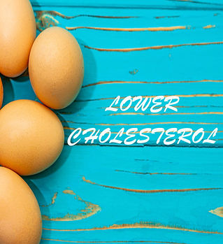 Home page lower cholesterol1.jpg