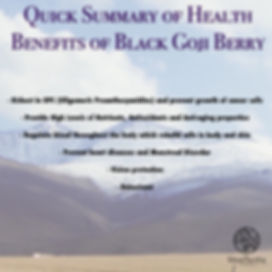 black goji berry summary