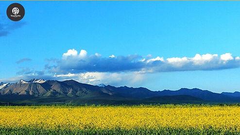 Qinghai-Tibet Plataeu China
