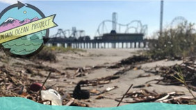 Cleaning Galveston and Ocean Pollution