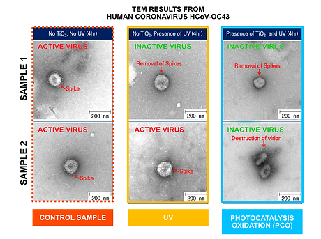 PCO Antiviral Performance - wht bg.png