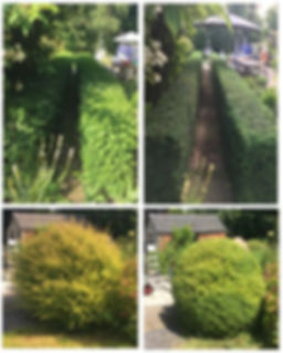 4 frame 1.JPG