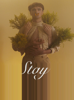 Stay Thumbnail 2