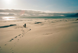 Dog and Sunset, Nehalem Bay