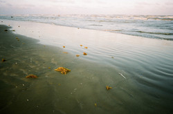 Low Tide, Sufside Beach