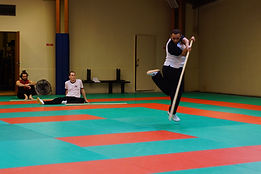 Stage de Kung fu Fred Boly.jpg
