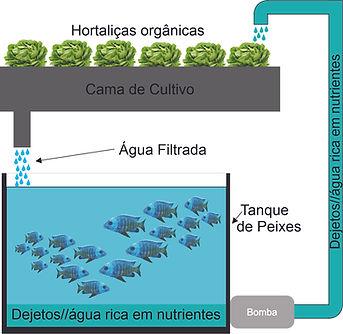 Aquaponia.jpg