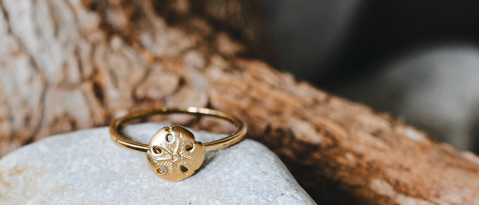 Gold sand dollar ring