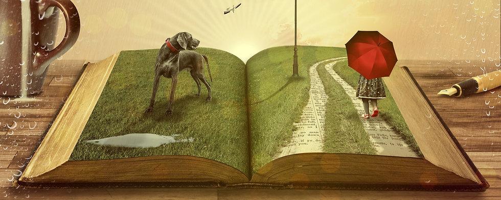 book-794978_edited.jpg
