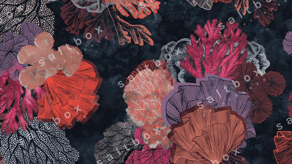 #FLO.108 - Underwater Wonder