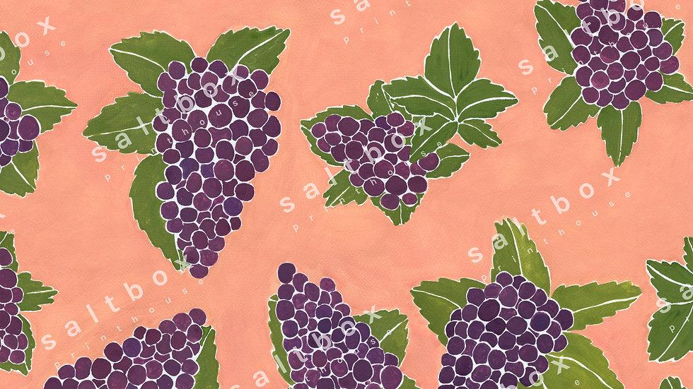 #FRU.003 - Sunny grapes