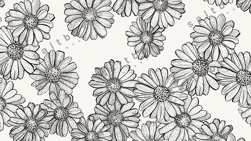 #FLO.063 - Daisy flower