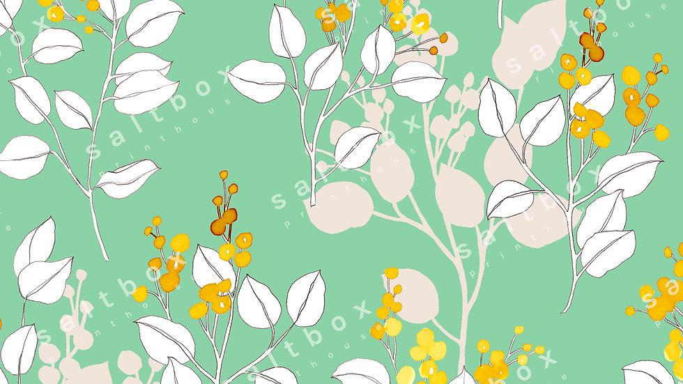 #FLO.066 - Watercolour Acacia