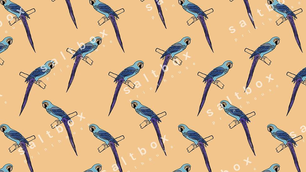 #FUN.002 - Parrots